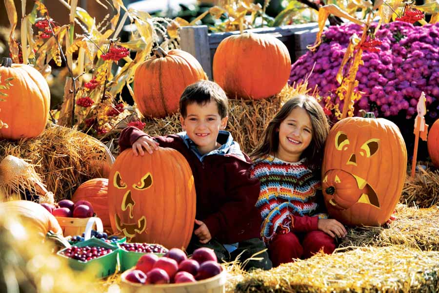 What Countries Celebrate Halloween Around the World ...